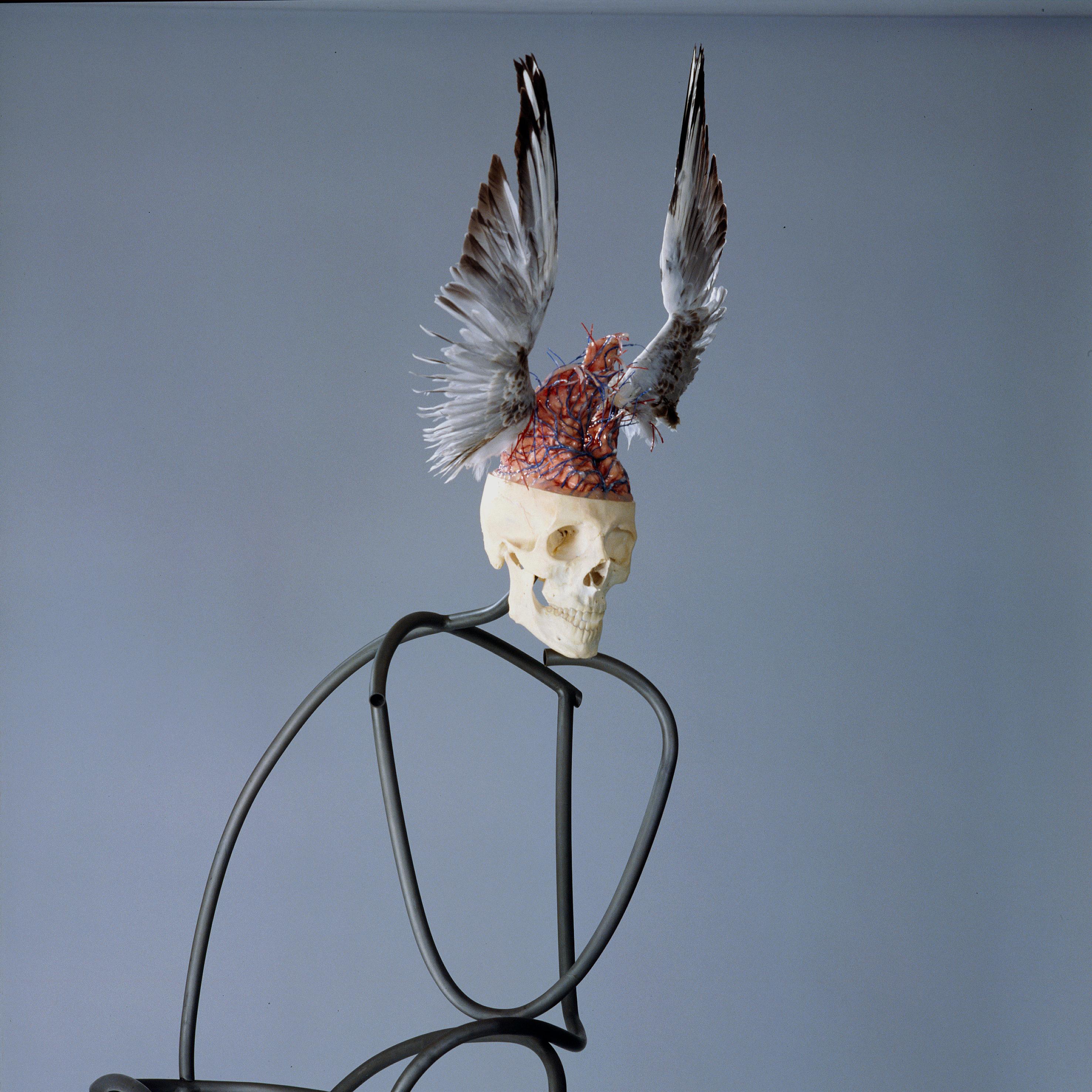 Anatomie der Phantasie nach Rodin Detail