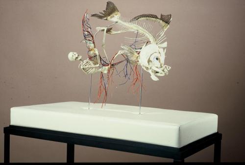 """""""Das Jonas-Paradigma ( Jonas und der Fisch I )"""" 1993"""
