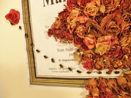 """Detail, """"Maria Rosa"""""""
