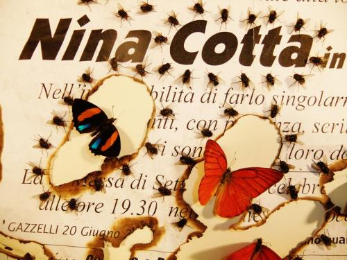 "Detail, ""Nina Cotto"""
