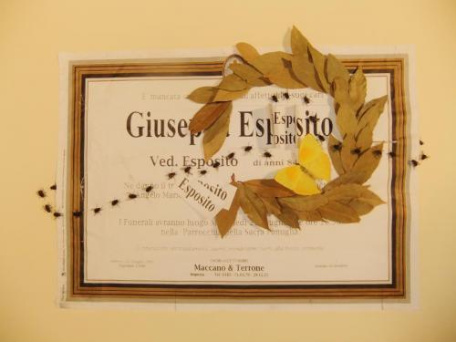 """Guiseppe Esposito"""